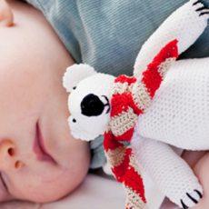 Kuscheliger Eisbär-Teddy