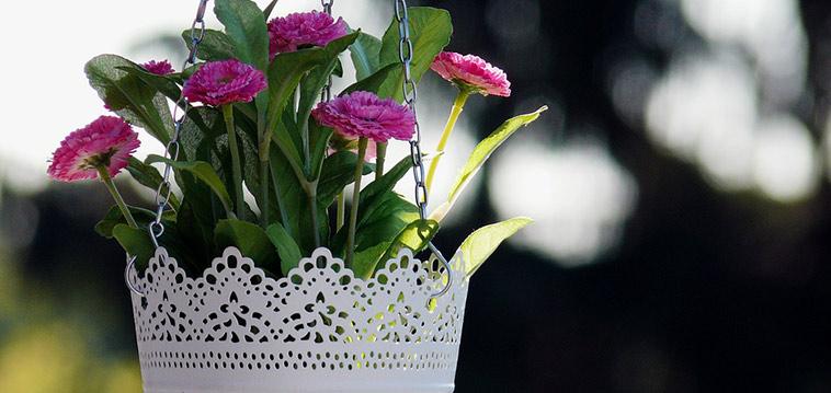 Makramee f r topfpflanzen aus deinen wollresten for Fliegen in topfpflanzen